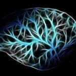 misterele creierului uman